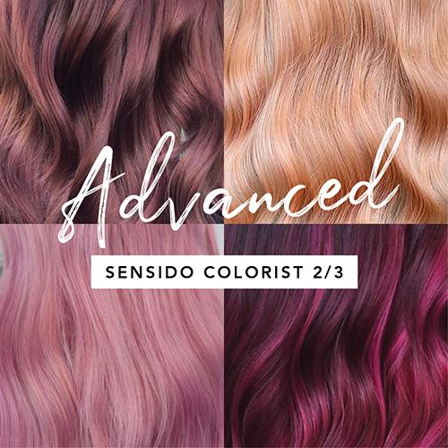 SensiDO Colorist 2/3